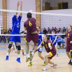 Wenglorz Volley - Wilczek Wilkasy