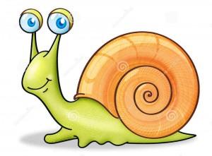 snail-3254749_cr