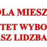 """Komitet Wyborczy """"Nasz Lidzbark"""""""